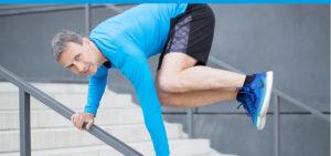 FASZIO® Trainingsstrategie Elastizität, Faszientraining für Faszientrainer